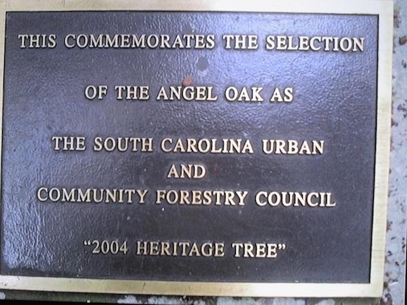 angel oak  - SC